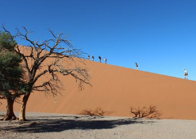 les dunes du sossusvlei
